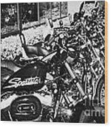 Row Of Harley Davidson Motorbikes Including Sportster Outside Motorcycle Dealership Orlando Florida  Wood Print