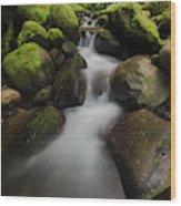 Ruckel Creek  Oregon, United States Wood Print