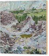 Ruins At Basgo Monastery Ladakh India Wood Print