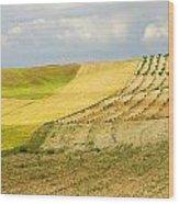 Rural Fields Wood Print
