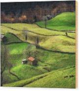 Rural Life Wood Print