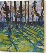Sacred Garden In Gotland Wood Print