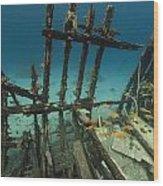 Safari Boat Wreckage And Aquatic Life In The Red Sea. Wood Print