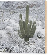 Saguaro Cactus After Rare Desert Wood Print