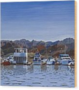 Saguaro Lake Left Wood Print