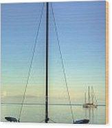 Sail Catamaran Wood Print