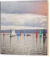 Sailing On Marine Lake A Reflection Wood Print