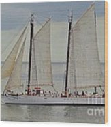 Sailing The Keys Wood Print