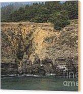 Salt Point Cliffs Wood Print