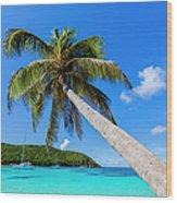 Salt Whistle Bay, Mayreau Wood Print