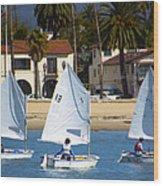 Santa Barbara Harbor Yacht Race Wood Print