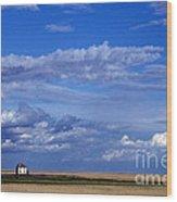Saskatchewan Farmland Wood Print by Mark Newman