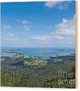 Scenic Coromandel Peninsula Nz Coastline Seascape Wood Print