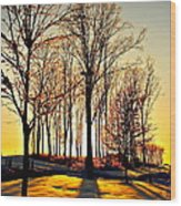 Scenic Sunset Wood Print