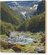 Scenic Valley In New Zealand Wood Print