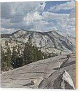 Scenic View In Yosemite National Park Wood Print
