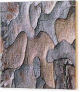 Scots Pine Bark Abstract Wood Print