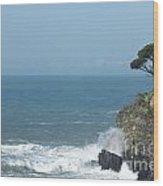 Sea Coast Wood Print