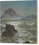 Seal Rock California Wood Print