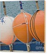 Seaside Colors Wood Print