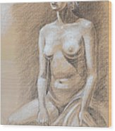 Seated Model Drawing  Wood Print