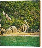 Secluded Beach  Wood Print