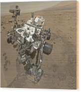 Self-portrait Of Curiosity Rover Wood Print by Stocktrek Images
