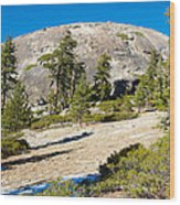 Sentinel Dome From Sentinel Dome Trail In Yosemite Np-ca  Wood Print