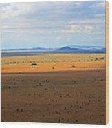Serengeti Landscape Wood Print