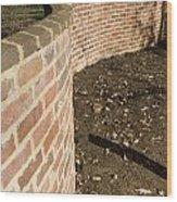 Serpentine Wall University Of Virginia Wood Print