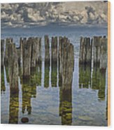 Shore Pilings At Fayette State Park Wood Print