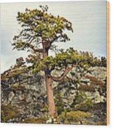 Sierra Landscape Wood Print