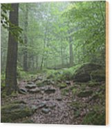 Silence Of The Forest Wood Print