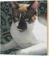 Silktapestrycatstm Wood Print