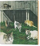 Six Cats Wood Print