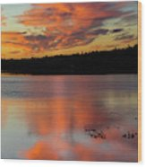 Skilak Lake, Alaska, The Aleutian Wood Print
