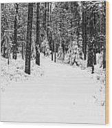 Small Road In A Snowy Forest Wood Print