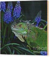 The Night Of The Iguana Wood Print