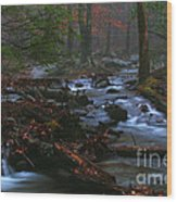 Smoky Mountain Color Wood Print