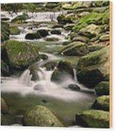 Smoky Mountain Stream Wood Print