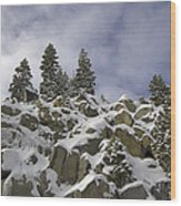 Snow Covered Cliffs And Trees Wood Print