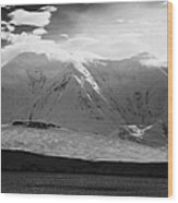 snow covered landscape of anvers island and neumayer channel Antarctica Wood Print