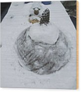 Snow Fall Serie December 2012  Wood Print