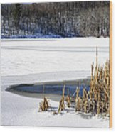 Snow On Lake Wood Print