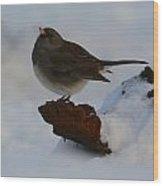 Snowbird Wood Print