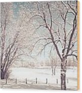 Snowy Trees On The Erie Canal Wood Print