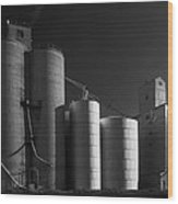 Spangle Grain Elevator Wood Print