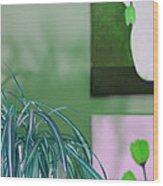 Spider Plant - Green Tulips - Still Life Wood Print