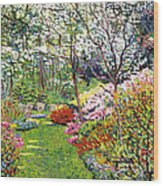Spring Forest Vision Wood Print