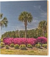 Spring Time In Charleston Wood Print